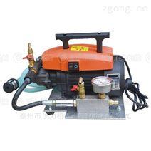 硫化机专用便携式电动泵